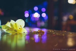 FOTO_67